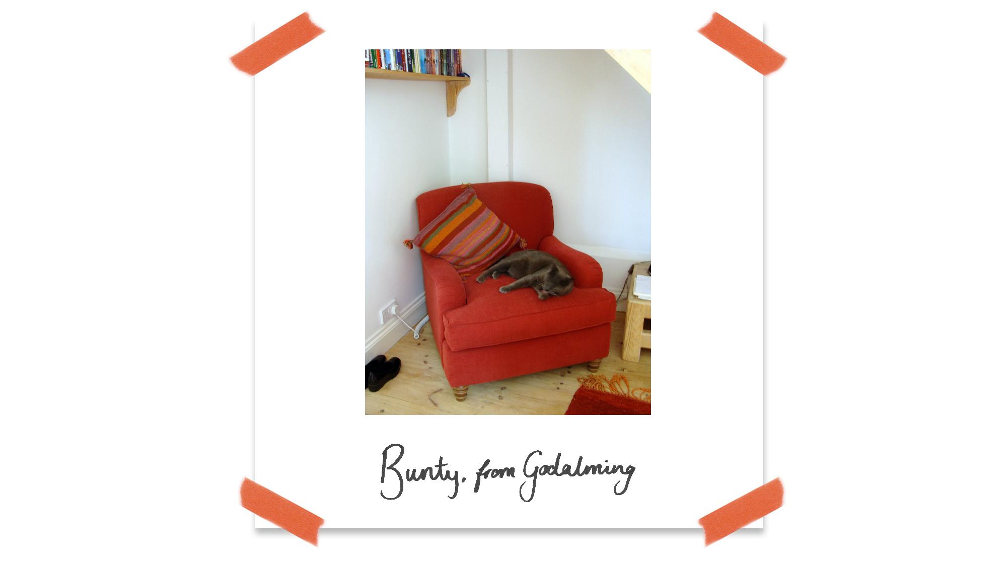 Customer Knightley Chair