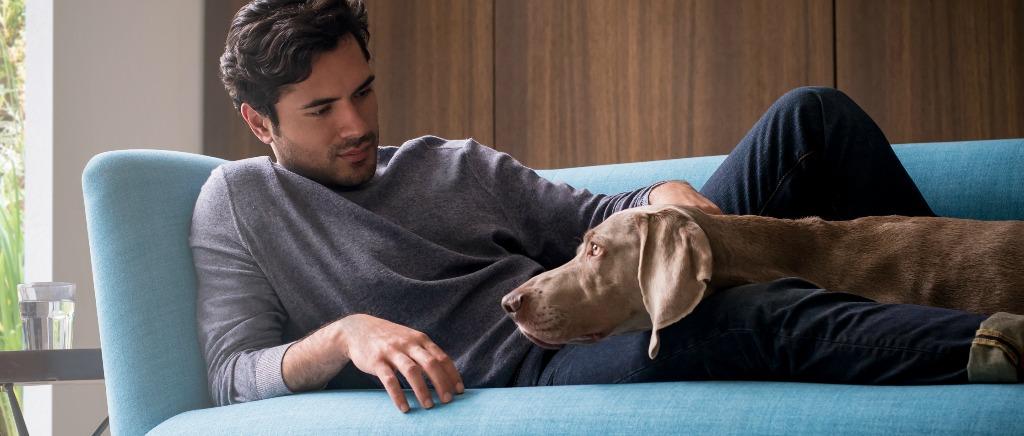 Man & Dog sitting on Elton Sofa