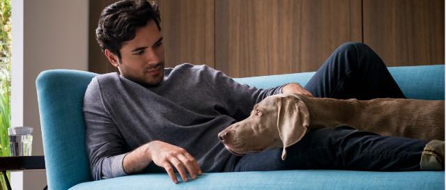 Man and dog on elton sofa